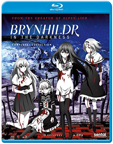 Brynhildr in the Darkness: Complete Collection [Blu-ray]