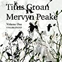 Titus Groan: Gormenghast Trilogy Audiobook by Mervyn Peake Narrated by Saul Reichlin