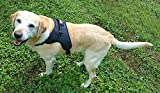 Dog Harness for No Pull & Walk Easy with Reflective Large Dog Harness with Handle and Security Safety Clip for Freedom Walking (L)