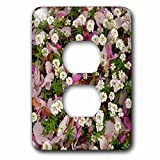3dRose Danita Delimont - Flowers - Usa, Oregon, Portland. Magnolia petals litter the ground of a garden. - Light Switch Covers - 2 plug outlet cover (lsp_279291_6)