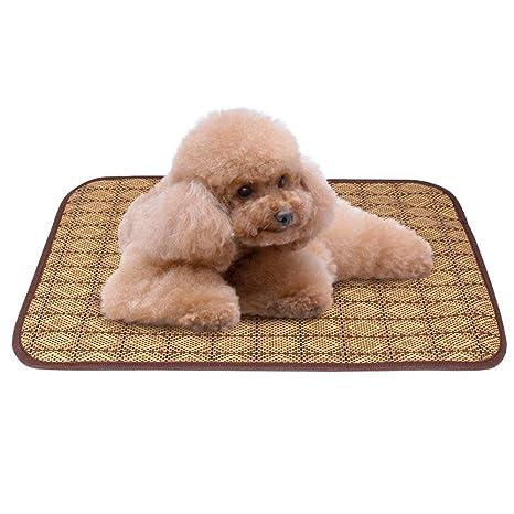 Dixinla Cama de Perro Mascotas Coche de cojín de Asiento Doble Mat Perro Mat Mat Antideslizante