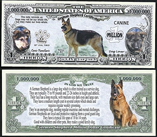 German Shepherd Dog Bill Puppy & Adult Pics, Facts on Back- Lot of 100 - Of Pics Puppies