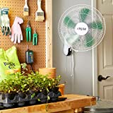 Hydrofarm Active Air ACF16 Wall Mount Fan, 16 Inch