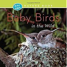 Baby Birds in the Wild