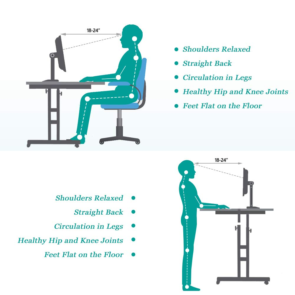 Height Adjustable Mobile Laptop Desk Sit Stand Table Computer Rolling Cart Workstation Display Holder with Dual Surface for Home Office by EBTOOLS