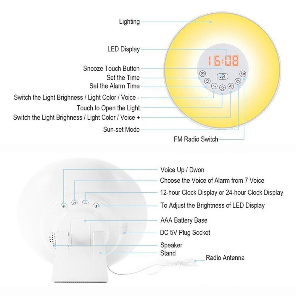 eSUN Wake Up Light, LED Reloj digital despertador despertador Lámpara con control de radio RGB Night lights, 7 colores 5 sonidos de la naturaleza (6638D): ...
