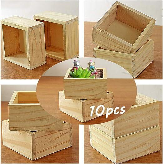Weanty - 10 cajas cuadradas para plantas, jardinería, suculentas ...