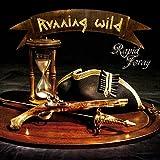 Rapid Foray [Vinyl LP]