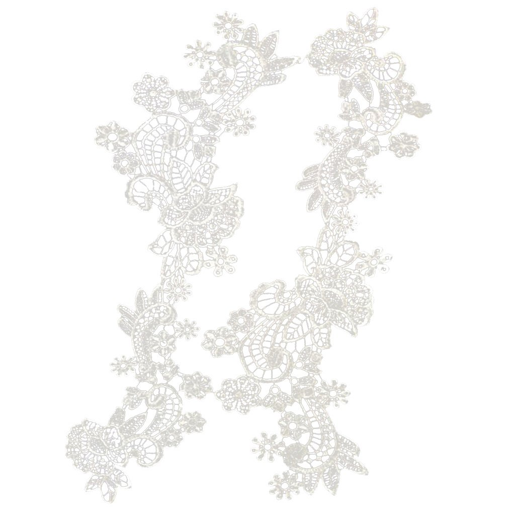 Dovewill 1 Pair Beautiful Floral Embroidery Polyester Lace Applique Flower Motif Lace Trim - White
