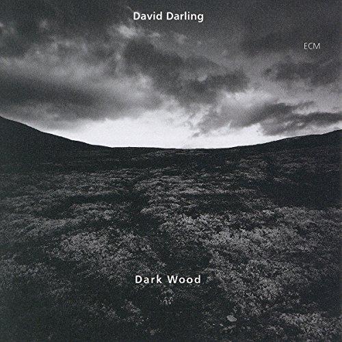 Cover of Darkwood