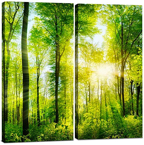 (Canvas Wall Art Decor - 12x24 2 Piece Set (Total 24x24 inch) - Forest Tree Landscape - Decorative & Modern Multi Panel Split Canvas Prints for Dining & Living Room, Kitchen, Bathroom, Bedroom & Office)
