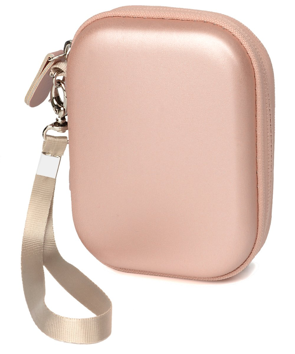 Travel Protection and Storage Case for Airpods Case, Featured Design, mesh Pouches for airpods case, Wall Charger and Cable, (Rose Gold)