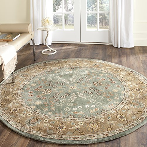 Safavieh Total Perform Collection TLP722A Hand-Hooked Sage and Copper Round Area Rug (6' Diameter)