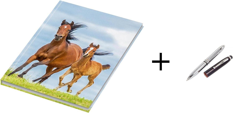 'Apuntes/cuaderno/DIN A4/96hojas/cuadros/70g/m²/