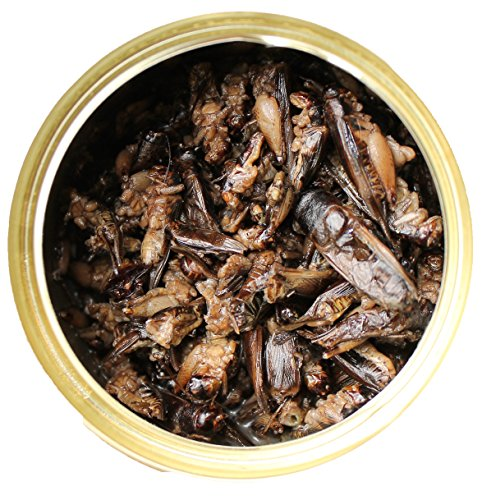 Exotic Nutrition Canned Crickets 35 g / 1.2 oz (6 Pack) by Exotic Nutrition (Image #1)