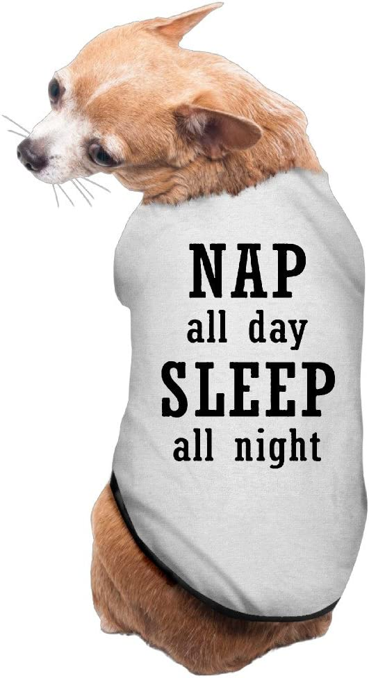 Theming Nap All Day Sleep All Night Casual Dog Vest