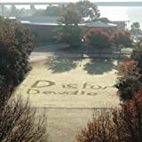 img - for D is for Dewdle: The Alphabet As Seen in Coolidge Park book / textbook / text book