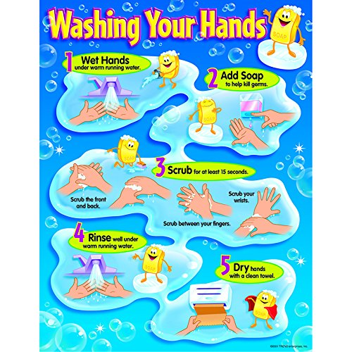 Trend Enterprises Washing Your Hands Learning Chart (T-38085