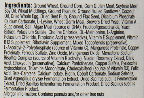 Compra Kaytee Exact Hand Feeding High Fat Baby Bird Food, 18-oz jar en Usame