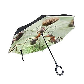 XiangHeFu - Paraguas invertido de Doble Capa, Diseño de Hormigas con Semillas de Pimienta y