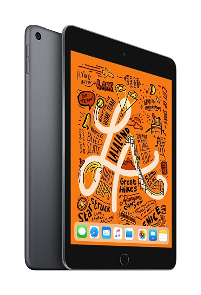 Apple iPad mini 256GB Wi-Fi Only (2019 Model) - Space Gray