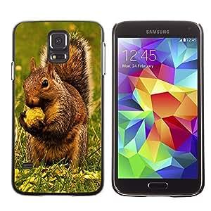 YOYO Slim PC / Aluminium Case Cover Armor Shell Portection //Brown Squirrel & Nut //Samsung Galaxy S5