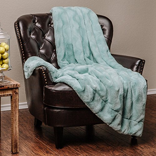 Aqua Blue Fur (Chanasya Super Soft Warm Elegant Cozy Fuzzy Fur Fluffy Faux Fur with Sherpa Wave Shape Embossed Plush Aqua Blue Microfiber Throw Blanket (50