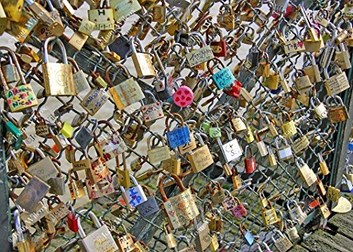 Padlocks on the La Passerelle des Arts Padlock Bridge Spring Paris France Europe Original Fine Art Photography Wall Art Photo (Passerelle Des Arts)
