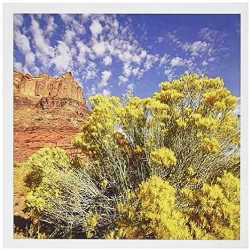 3dRose Utah, roca roca roca roca cerca de Moab, cepillo para polvo de conejos – US45 RSP0027 – Rob_Sheppard – Tarjetas...