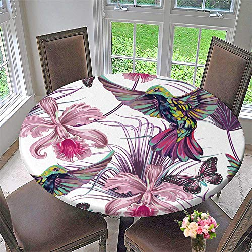 PINAFORE HOME Elasticized Table Cover summerbackground with hummbirds Fly Palm Leaves Tropical Flowers Orchid Machine Washable 59