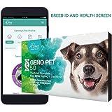 ORIVET Dog DNA Test   Comprehensive Dog Breed Test Kit, Genetic Testing, Health Risks Screen and Life Plan GenoPet 5.0 for Ca