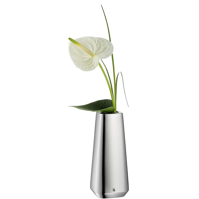 Kết quả hình ảnh cho Flower vase WMF Stratic Vase amazon