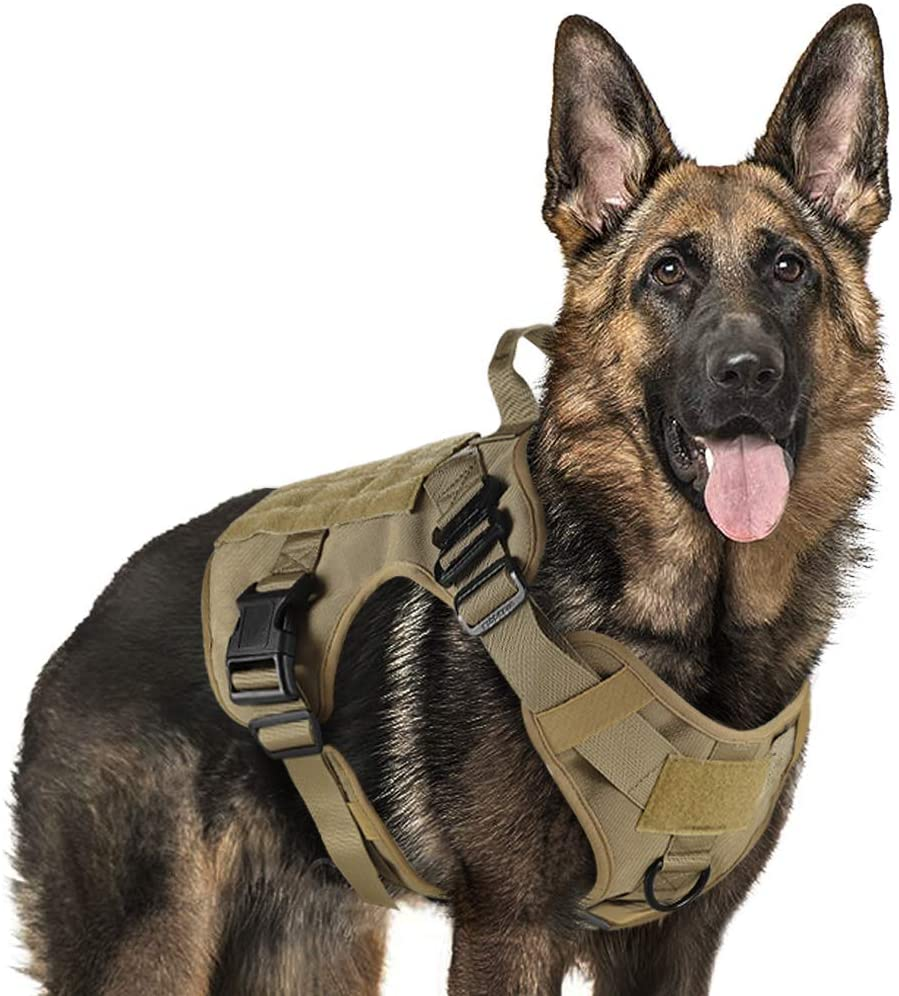 Image of a military dog sticking his tongue out, wearing a tactical harness in tan color.