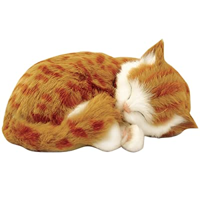"Perfect Petzzz Orange Tabby Cat Realistic ""Breathing"" Sleeping Kitty Pet Set: Toys & Games"