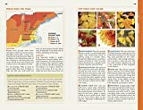 Fodor's New England: with the Best Fall Foliage