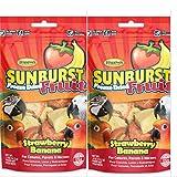 Higgins 2 Pack SUNBURST FREEZE DRIED FRUIT STRAWBERRY BANANA .5 oz ea. Fun Bird Snack Treats
