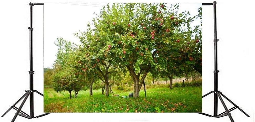 GoEoo 7x5FT Vinyl Backdrop Apple Trees Orchard Garden Photography Background Fruit Harvest Outdoor Fresh Scenery Natural Photo Background Backdrop Photo Studio Props Children Baby Kids Photo Shoot