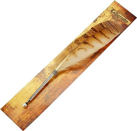 Pluma pluma caligrafía bolígrafo con tinta juego de bolígrafo de ...