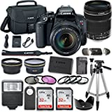 Canon EOS Rebel T7i DSLR Camera Bundle with Canon EF-S 18-135mm f/3.5-5.6 IS STM Lens + 2pc SanDisk 32GB Memory Cards + Accessory Kit For Sale