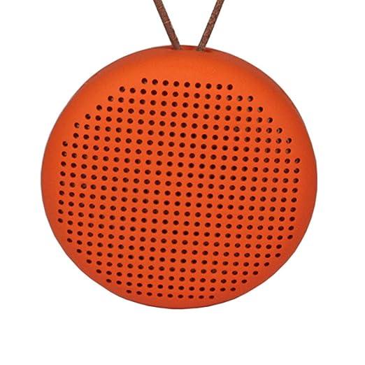 3 opinioni per Pushingbest Soft TPU Case guscio protettivo per BeoPlay A1 Bluetooth Speaker