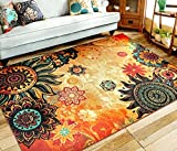 EUCH Contemporary Boho Retro Style Abstract Living Room Floor Carpets,Non-Skid Indoor/ Outdoor Large Area Rugs,39''x59'' Lotus