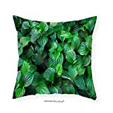 VROSELV Custom Cotton Linen Pillowcase Material. Thai Medicinal Plants.(Piper Sarmentosum Roxb.) - Fabric Home Decor 28''x28''