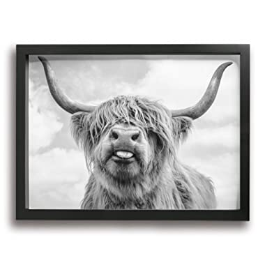 LP ART Black and White Freedom Highland Cow Photo Print Art Poster Modern Home Decor Wall Art for Home or Office Decorations 12 x16  Black Framed