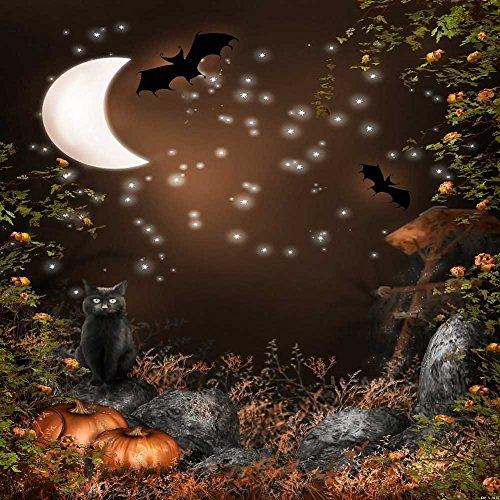 Halloween Night 10' x 10' Digital Printed Photography Backdrop KA Series Background KA013 -