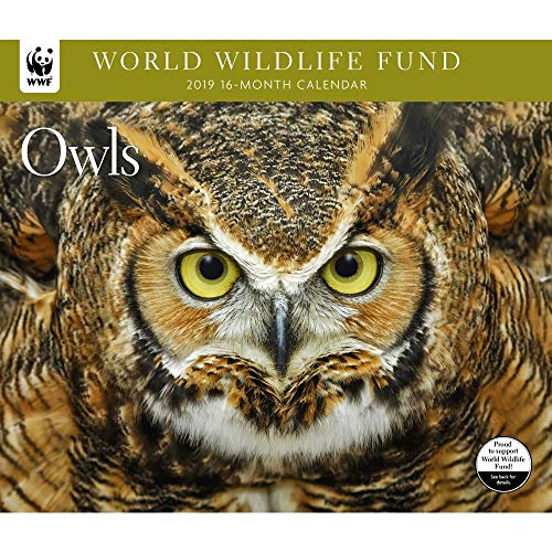 - 2019 Owls WWF Wall Calendar, by Calendar Ink