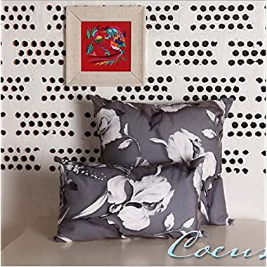Coeus 2 Pcs Square &Rectangle Accent Decorative High Quality Throw Pillow Covers /Pillow Shams/pillow Cases/ Pillow Pillowa, Include 2 Colors /Designs ,18 X 18 Inch,12 X 20 Inch