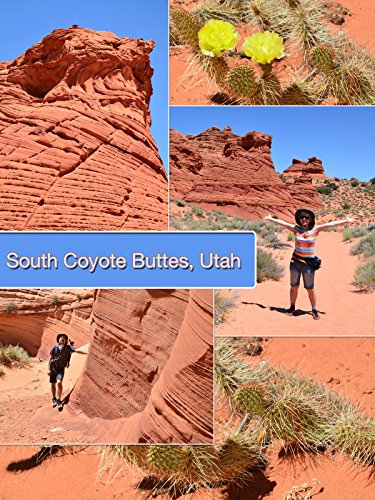 South Coyote Buttes  Utah
