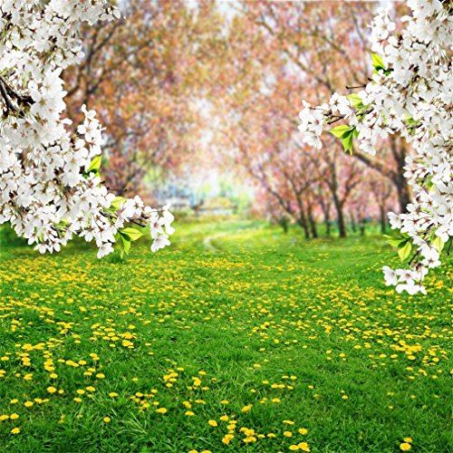 AOFOTO 8x8ft Spring Scenery Photos Backdrop Countryside Garden Park Yellow Dandelion Meadow Flowers Blossom Background for Photography Florets Sweet Floral Grass Kid Baby Portrait Photo Studio -