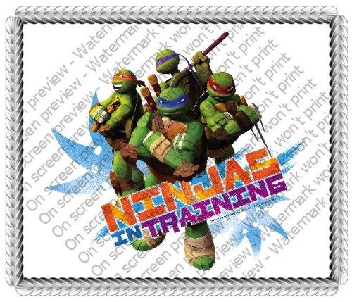 1/4 Hoja ~ TNMT Ninja en entrenamiento Cumpleaños ...