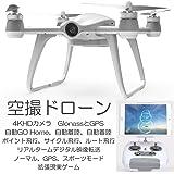 空撮ドローン 4Kカメラ GPS付き 自動フライトアシスタント リアルタイム映像転送 ワルケラ WALKERA AIBAO モード2 (walkera-aibao-m2) 【技適・電波法認証済】 AR ドローン | Phantom 3 Standard ファントム 3 DJI